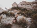 11x17 Pigment Print - Into The Wild - Vasquez Rocks - Idiviil 1 of 5 $500.jpg