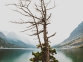 11x17 Pigment Print - The Rising Lands - St Marys Lake - 1 of 5 - $500