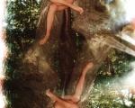 Queen of Trees 2