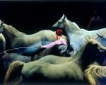 Sea_Of_Horses